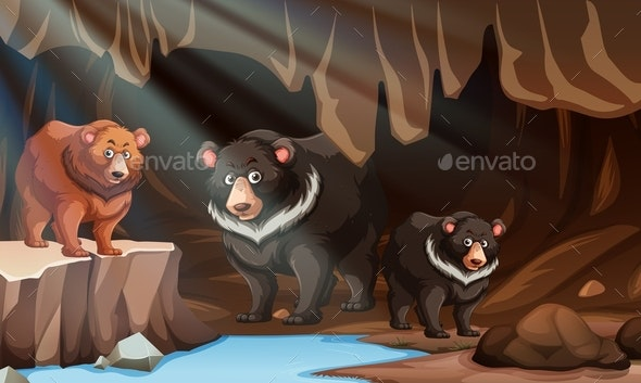 Wild Bear Living in The Cave - Animals Characters