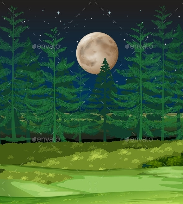 A Forest At Night - Landscapes Nature