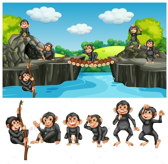 Baby Ape in Cave - Animals Characters