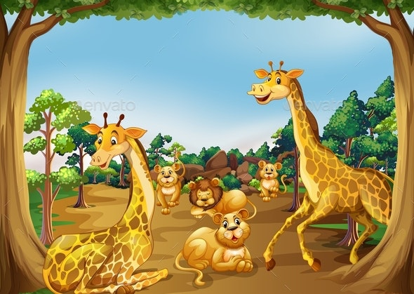 Wild Animals in The Forest - Animals Characters