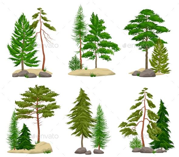 Realistic Pine Forest Elements Set - Flowers & Plants Nature