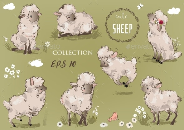 Sheep Collection - Animals Characters