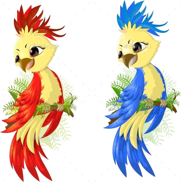 Two Options Parrot - Animals Characters