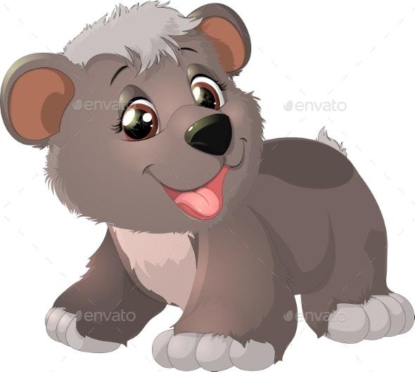 Baby Bear Cartoon - Animals Characters