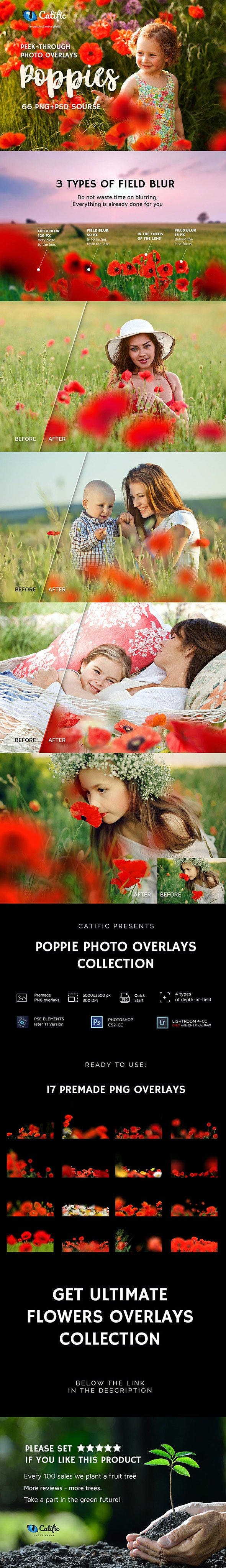 17 Poppie Flowers Photo Overlays - Photo Effects Actions