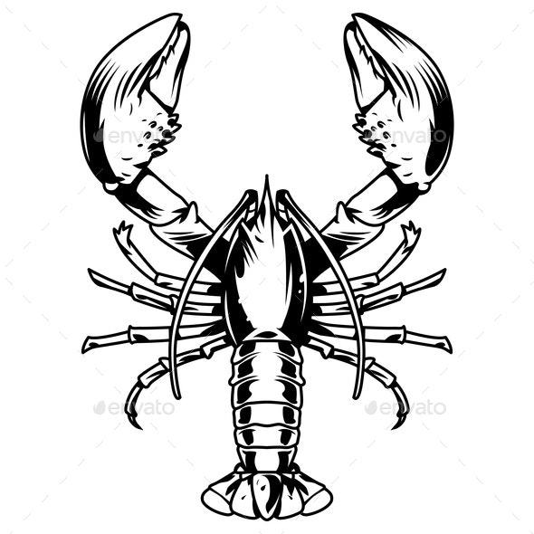 Vintage Aquatic Creature - Animals Characters