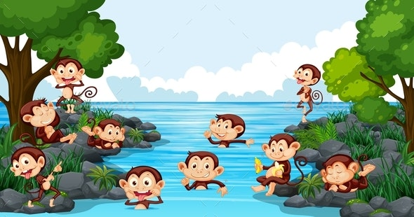 Monkeys Playing in The Lake - Animals Characters