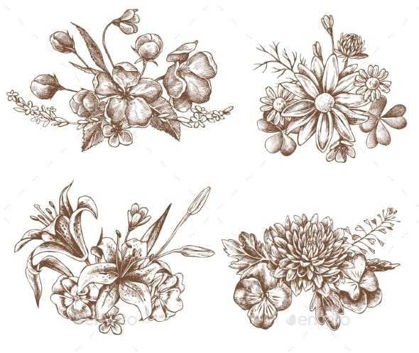 Vector Collection of Flowers - Flowers & Plants Nature