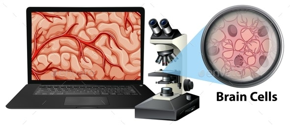 Close Up Of Brain Cells With Microscope And Laptop - Health/Medicine Conceptual