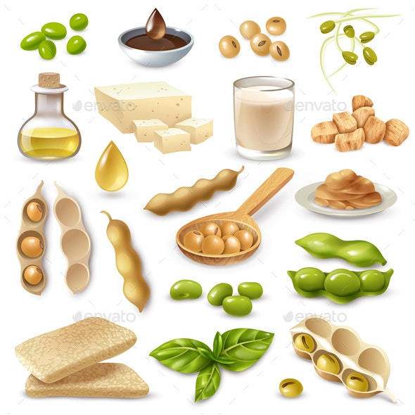 Soy Food Products Set - Food Objects