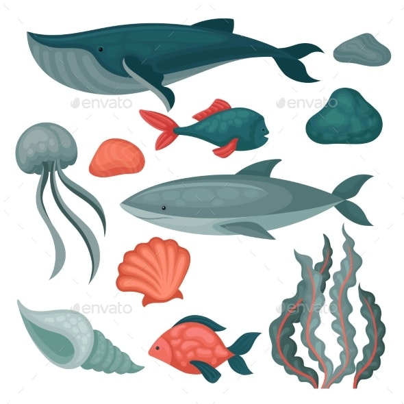 Flat Vector Set of Sea Animals and Objects. Big - Animals Characters