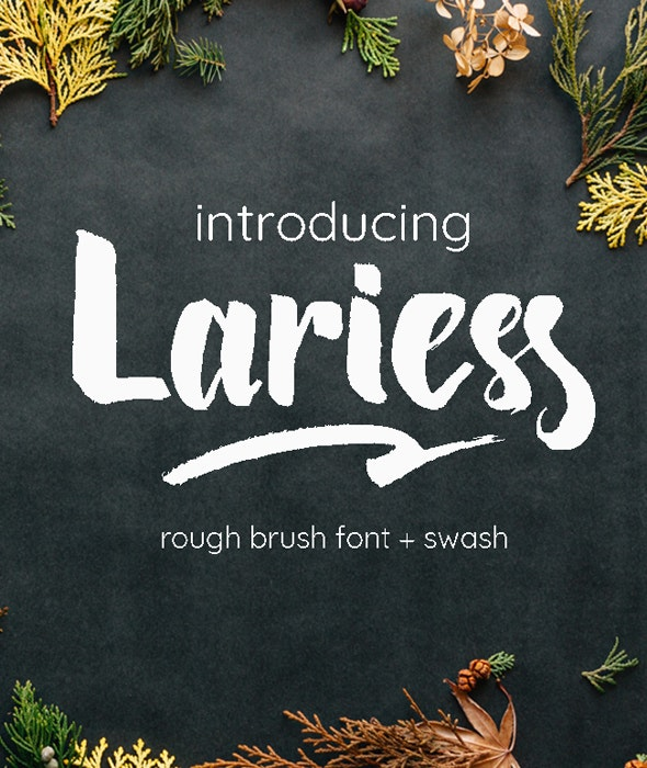 Lariess | Brush Font With Swash - Hand-writing Script
