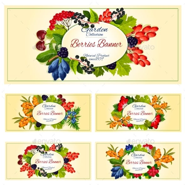 Berry and Fruit Banner Set for Food Label Design