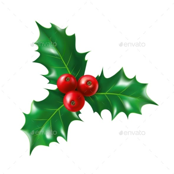 Isolated Holly Berry with Leaves