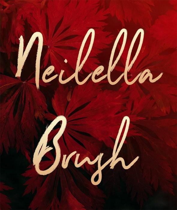 Neilella - Handwriting Fonts