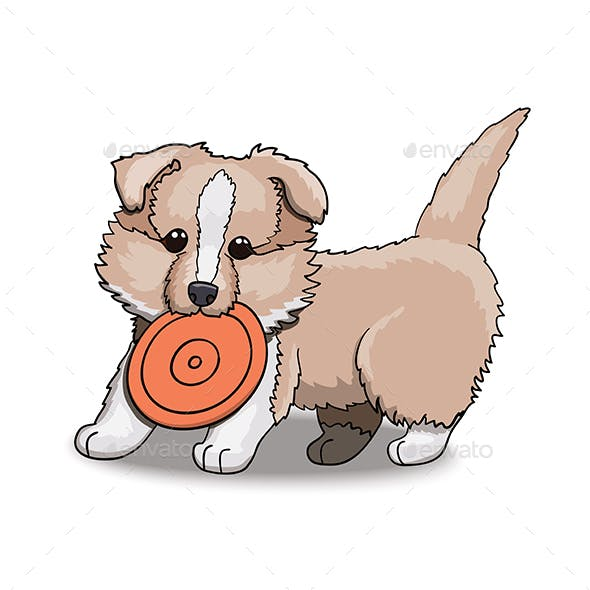 Collie Puppy With Frisbee