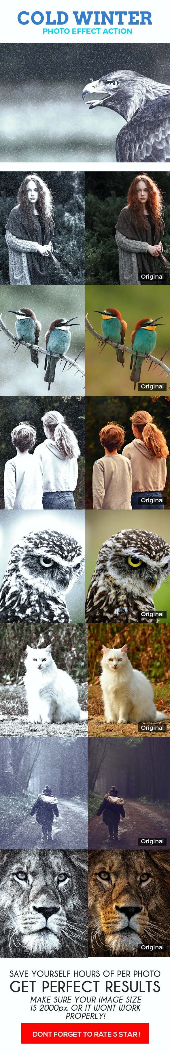 Cold Winter Effect Action - Photo Effects Actions