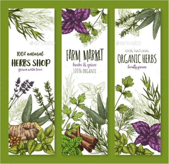Herb and Spice Banner Set - Food Objects