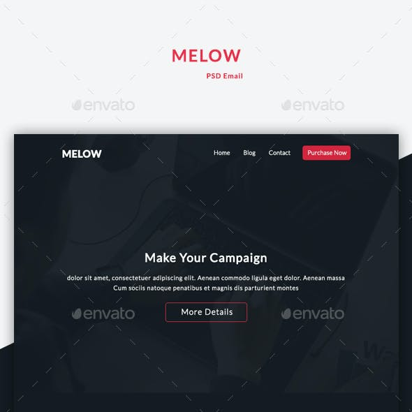 Email Newsletter - Melow
