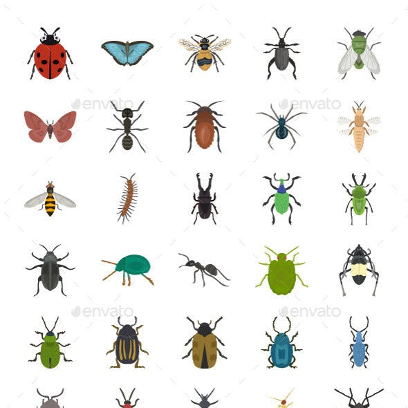 60 Insects Vector Icons
