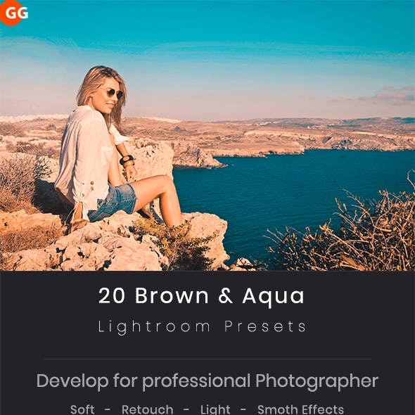 20 Brown & Aqua Lightroom Preset