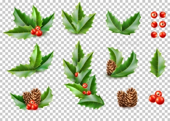 Christmas Leaves.Vector Realistic Merry Christmas Holly Leaves Fir