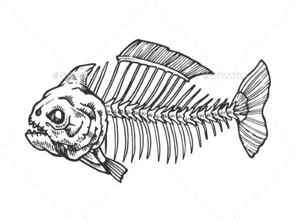 Piranha Fish Skeleton Engraving Vector - Miscellaneous Vectors