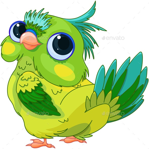 Cute Baby Parrot - Animals Characters
