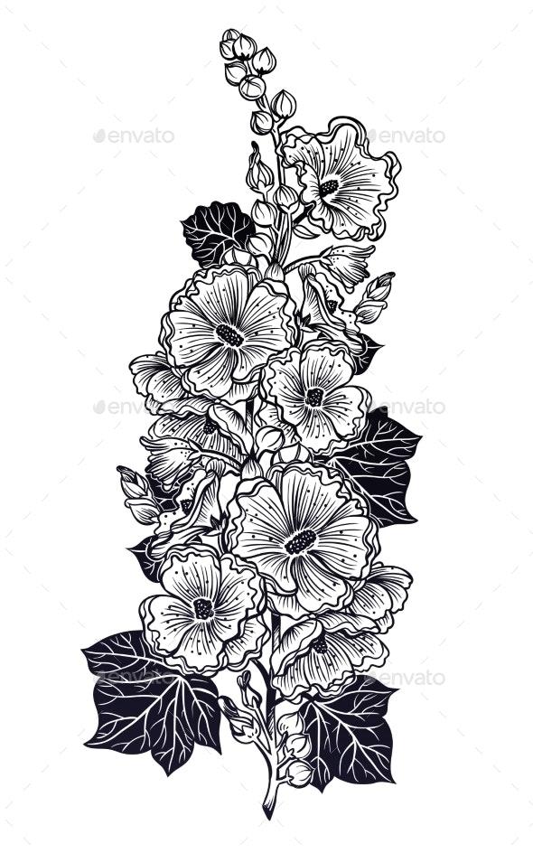 Decorative Malva or Mallow Flowers on a Stem - Flowers & Plants Nature