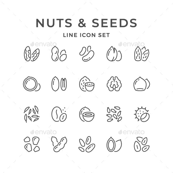 Set Line Icons of Nuts and Seeds - Food Objects