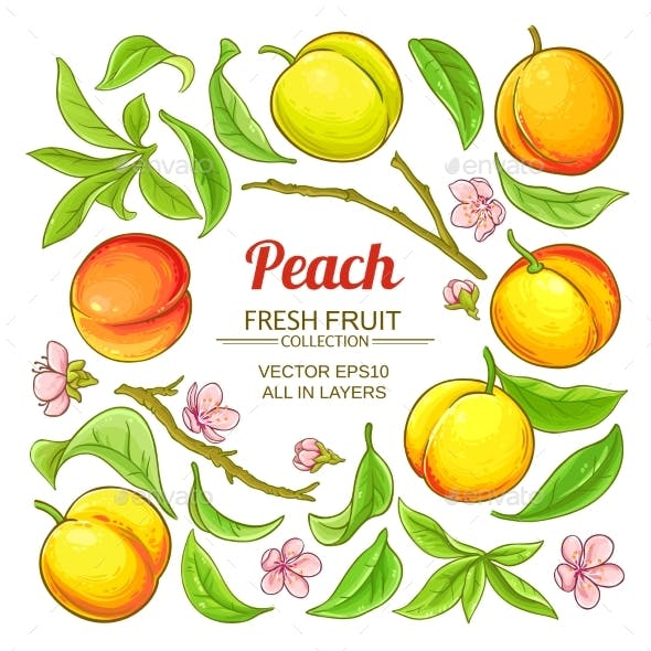 Peach Elements Vector Set