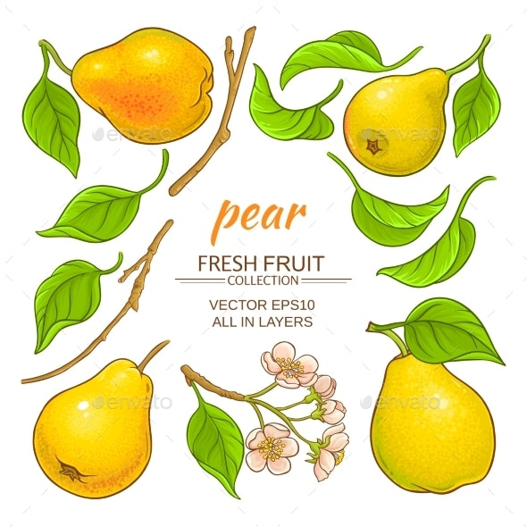 Pear Elements Set - Food Objects