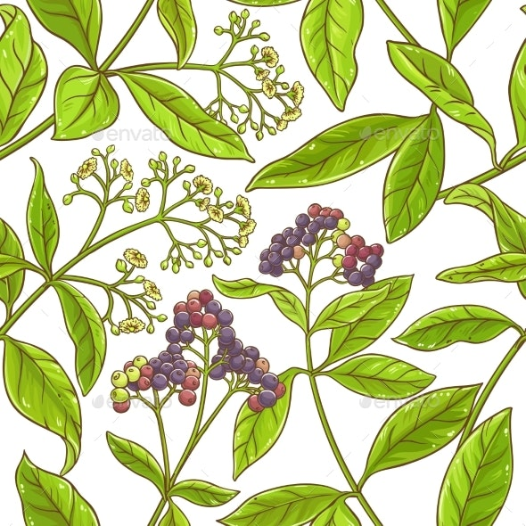 Allspice  Branch Vector Pattern - Food Objects