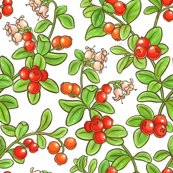 Cranberry Branch Vector Pattern - Food Objects