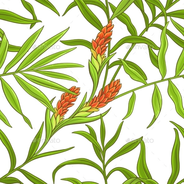 Ginger Vector Pattern - Health/Medicine Conceptual