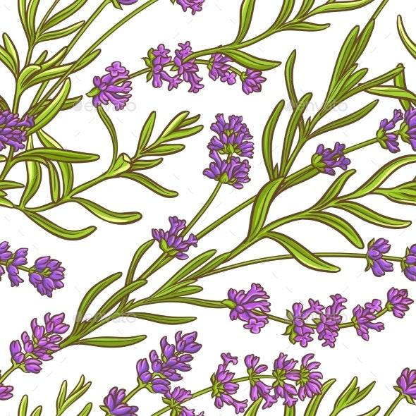 Lavender Plant Vector Pattern - Health/Medicine Conceptual