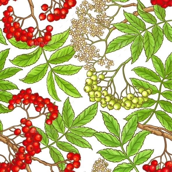 Rowan Branch Vector Pattern - Health/Medicine Conceptual