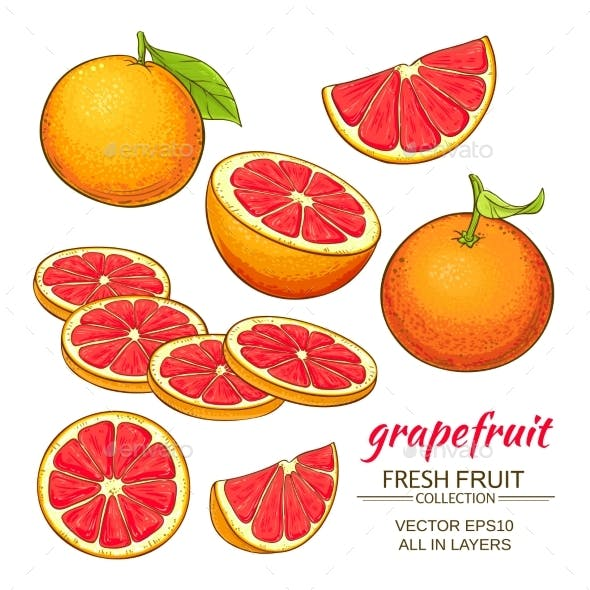 Grapefruit Vector Set