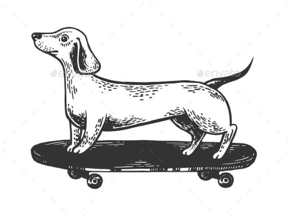 Dog on Skateboard Engraving Vector Illustration - Miscellaneous Vectors