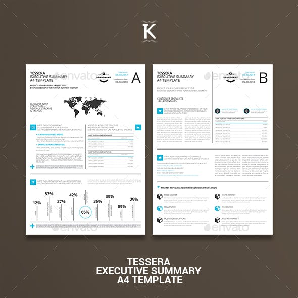 Tessera Executive Summary A4 Template