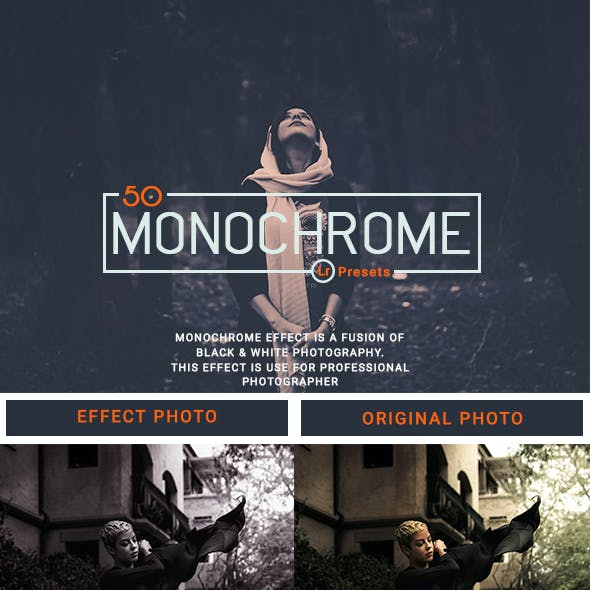 50 Monochrome Lightroom Presets