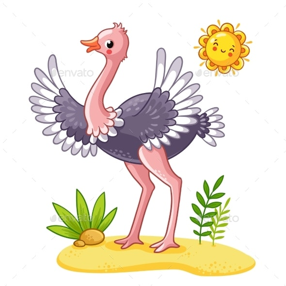 Ostrich Stands on the Meadow - Animals Characters