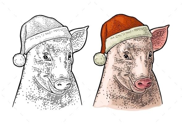 Pig Head in Santa Claus Hat - New Year Seasons/Holidays