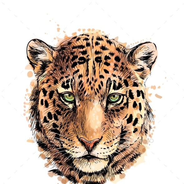 Portrait of a Leopard Head From a Splash of
