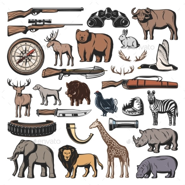 Weapon of Hunting Sport Wild Animals - Sports/Activity Conceptual