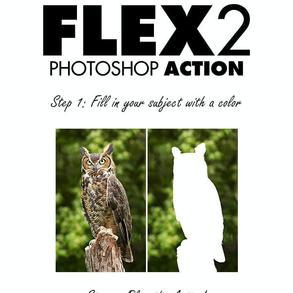 Flex 2 Photoshop Action