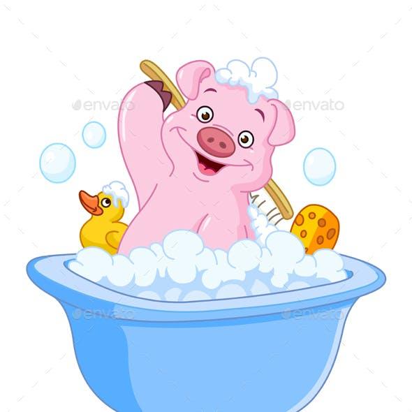 Pig Taking a Bath