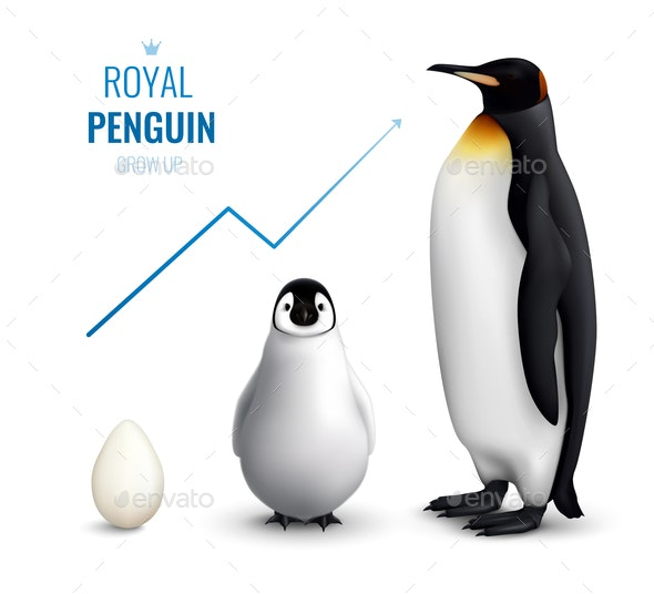 Penguin Grow Up Realistic - Animals Characters