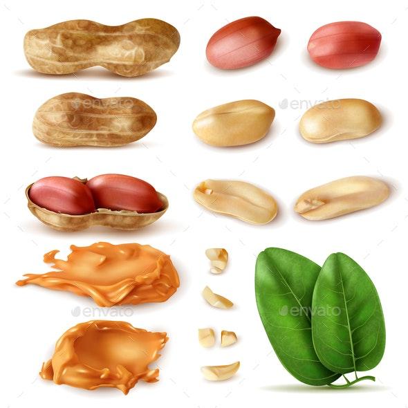 Peanut Beans Realistic Set - Food Objects