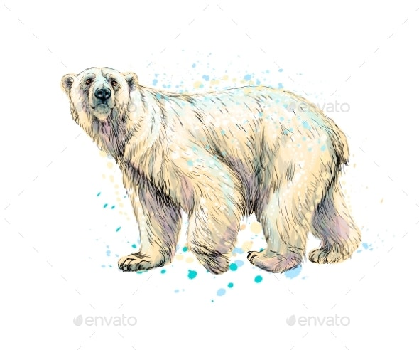 Abstract Polar Bear From a Splash of Watercolor - Animals Characters